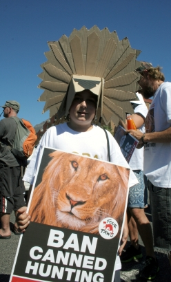 Ban canned lion hunting supporters 7