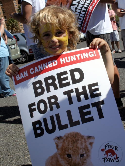 Ban canned lion hunting supporters 8
