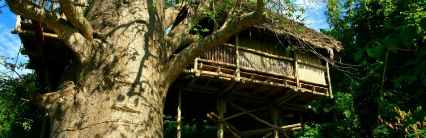 Chole Mjini treehouse