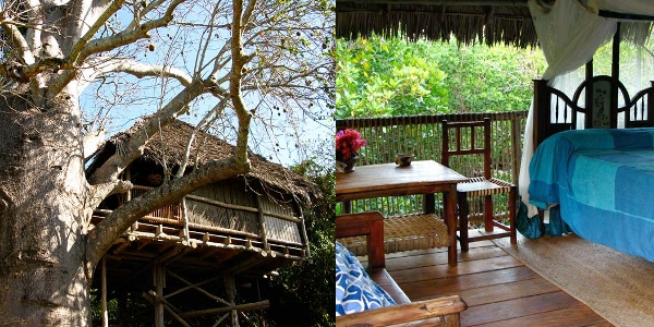 Chole Mjini treehouse room