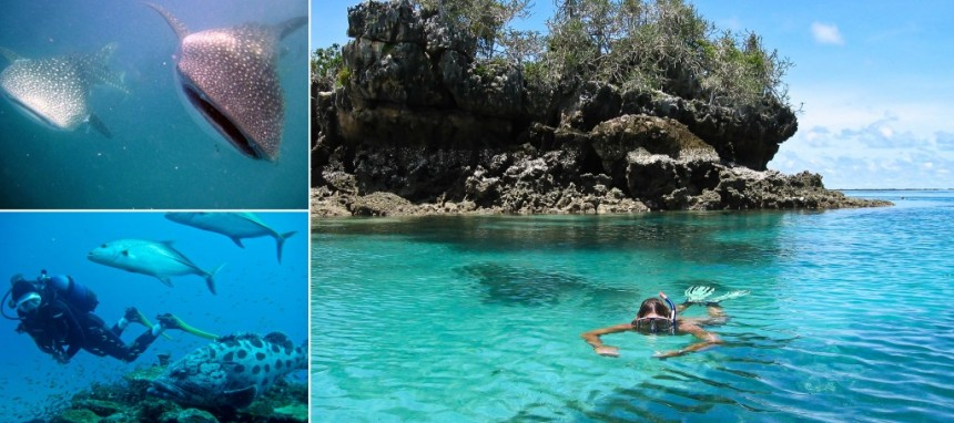 2 Chole-Mjini-Marine-Reserve-Snorkelling-Diving