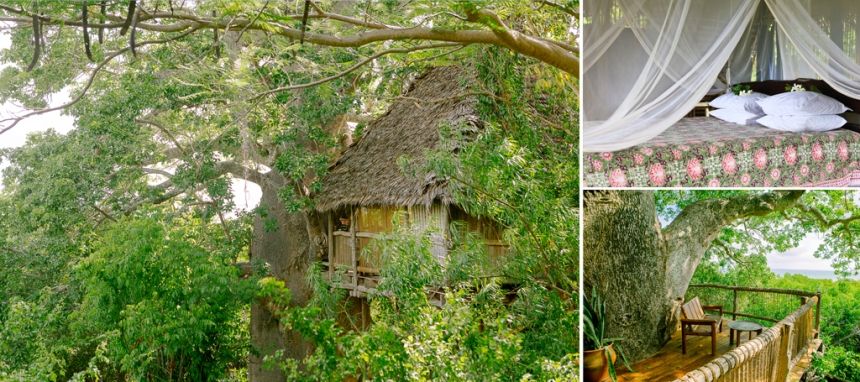 3 Chole-Mjini-Treehouse-Accomodation-Eco-Lodge