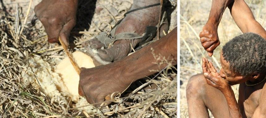 San people Nhoma Safari Camp Namibia Finding Water