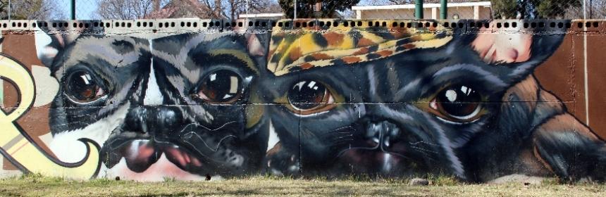 Dekor street art Jeppestown