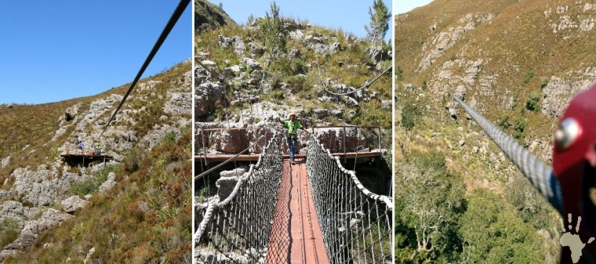 Cape Canopy Tour Cables platforms swing bridge