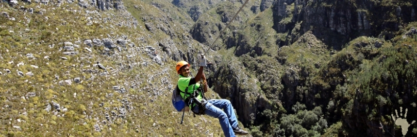 Cape Canopy Tour Elgin