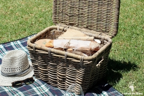 Artisanal picnics with wine, rustic bread, cheese