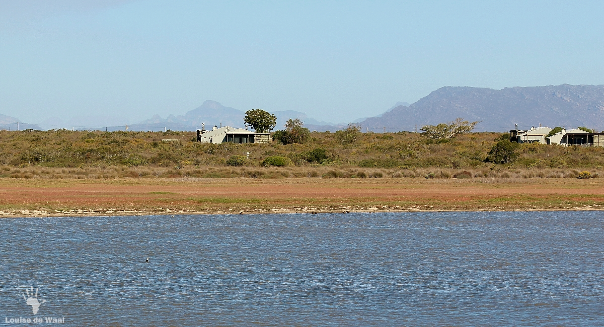 Eco-cabins overlooking the vlei at Rocherpan