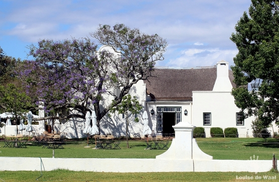 Vergenoegd Farm was granted by Simon van der Stel 1696