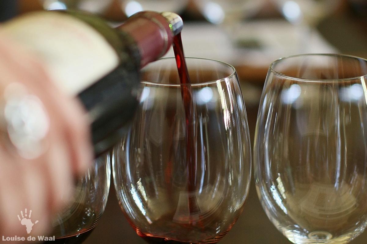 Wine tasting at Vergenoegd Wine Estate