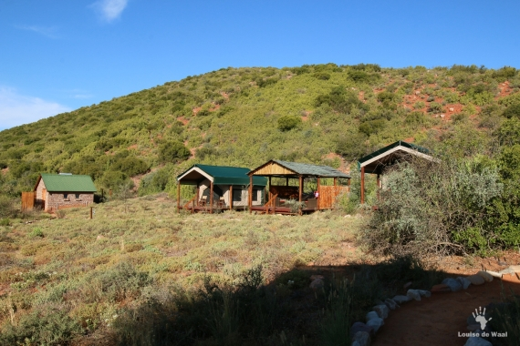 Safari style tents at Sweetthorn CapeNature Gamkaberg