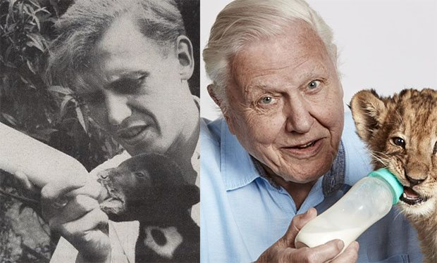 Sir David Attenborough on the front of the Radio Time in 1956 and 2016.