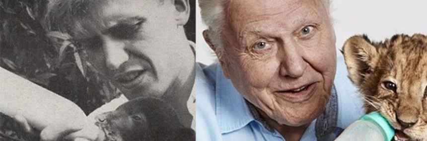 David Attenborough On front page of the Radio Times 1956 and 2016