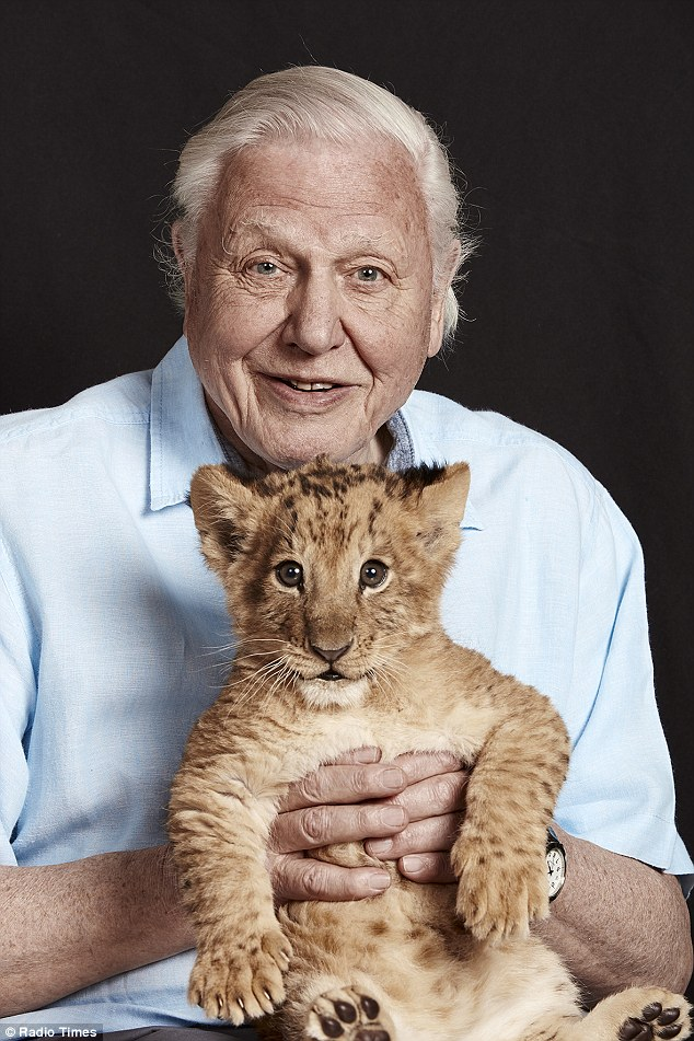 Sir David Attenborough holding a lion cub