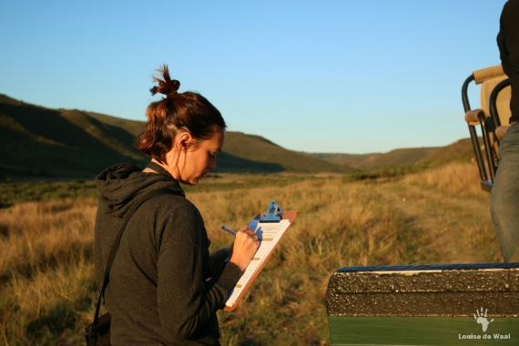 Keeping records of camera trap locations, Gondwana Game Reserve