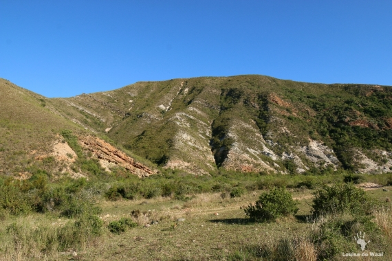 Rock formations at Gondwana Game Reserve, Garden Route