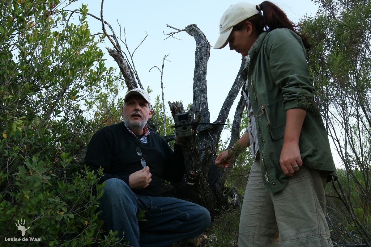 Setting up camera traps at Tented Eco Camp, Gondwana