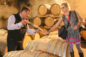 Mellasat Vineyards White Pinotage barrel tasting, Paarl Cape Winelands