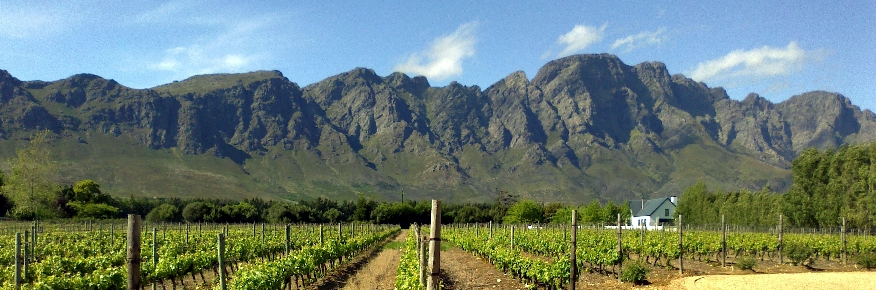 paarl-wellington-cape-winelands