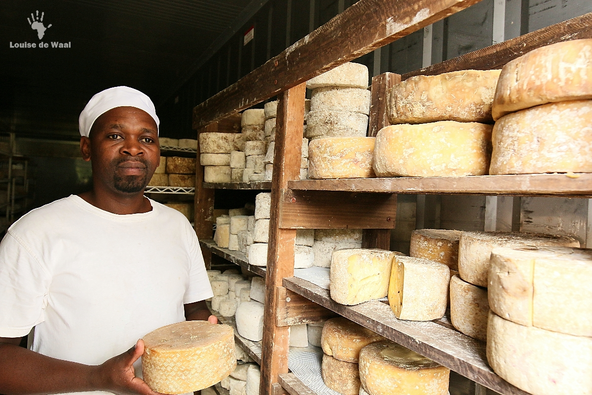 "The ""Fermier"" cheese maker at Kimilili Farm, Tulbagh"