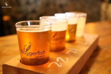 Beer tasting at Triggerfish Brewing, Somerset West
