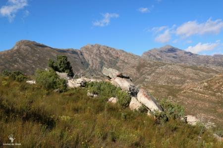 View across Bastiaanskloof Reserve