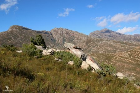 View across Bastiaanskloof Reserve