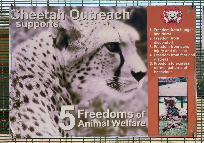 Five Freedoms of Animal Welfare sign