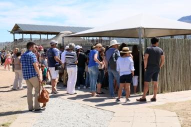 Cheetah Outreach Cape Town