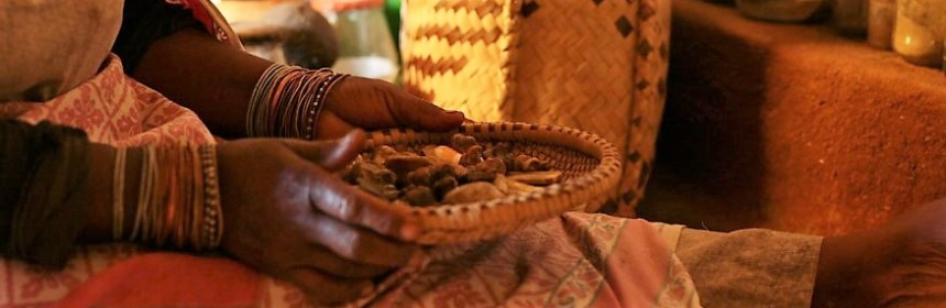Traditional healer Limpopo