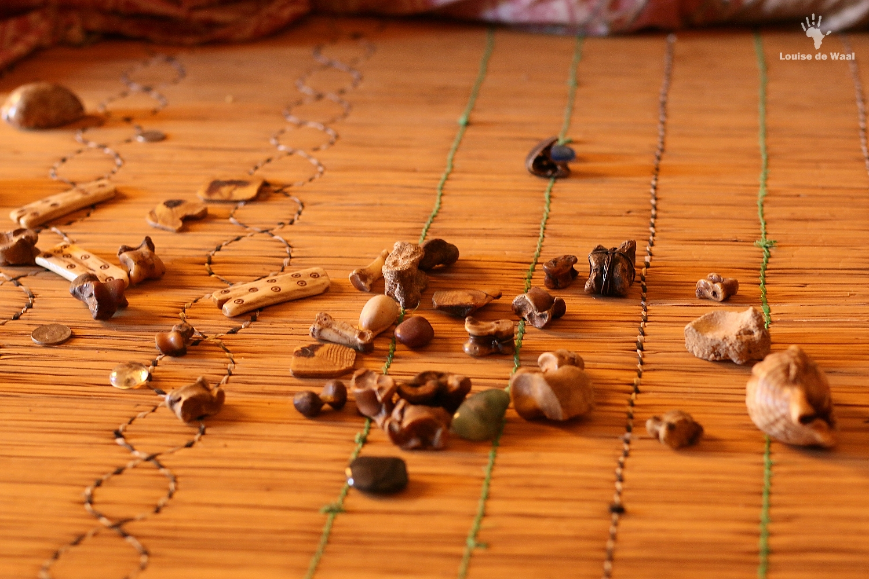The bones of a Sangoma in Limpopo