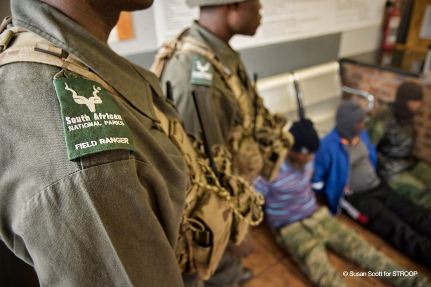 Stroop poachers arrested by SANParks anti-poaching rangers