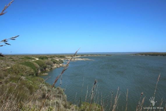 De Hoop Vlei Ramsar site